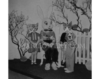 Weird Easter Art Print, Dog and Cat Art, Black and White, Creepy Cute Anthropomorphic Art, 7x7 on 8.5 x 11 Inch Paper