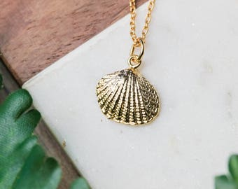 Dainty seashell necklace | Gold plated layering necklace | Gifts for her under 20 | Ocean lover gift | Shell jewelry | Ocean necklace |