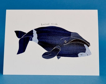 Bowhead Whale // Watercolour Illustration // Blank Card