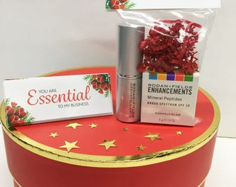Rodan + Fields Consultant Gift Bags - Holiday Essential - Qty 10
