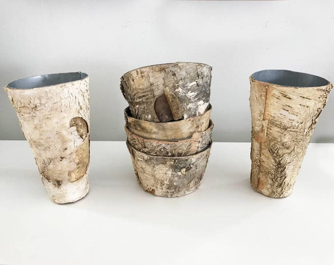 SALE HALF OFF Birch Bark Vase and Pot Wood Wrapped Planters my have defects, Wedding Centerpiece Birch and Zinc Flower Pot, 50% Off