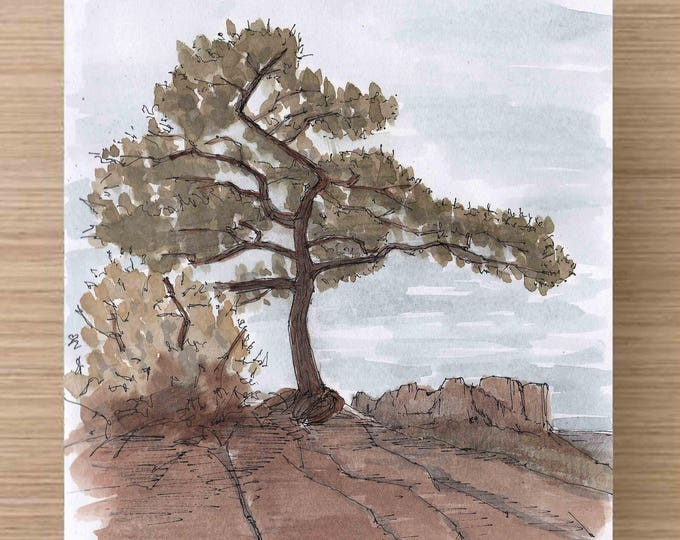 Featured listing image: Tree on the Lost Mine Trail in Big Bend National Park - Butte, Texas, Hike, Ink Drawing, Sketch, Watercolor, Art, Pen and Ink, 5x7, 8x10