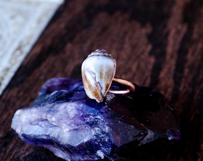 Pacific Ocean Seashell Ring Size 5 1/4