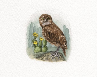 Burrowing Owl and Cactus -- Original watercolour painting by: Melissa Crook