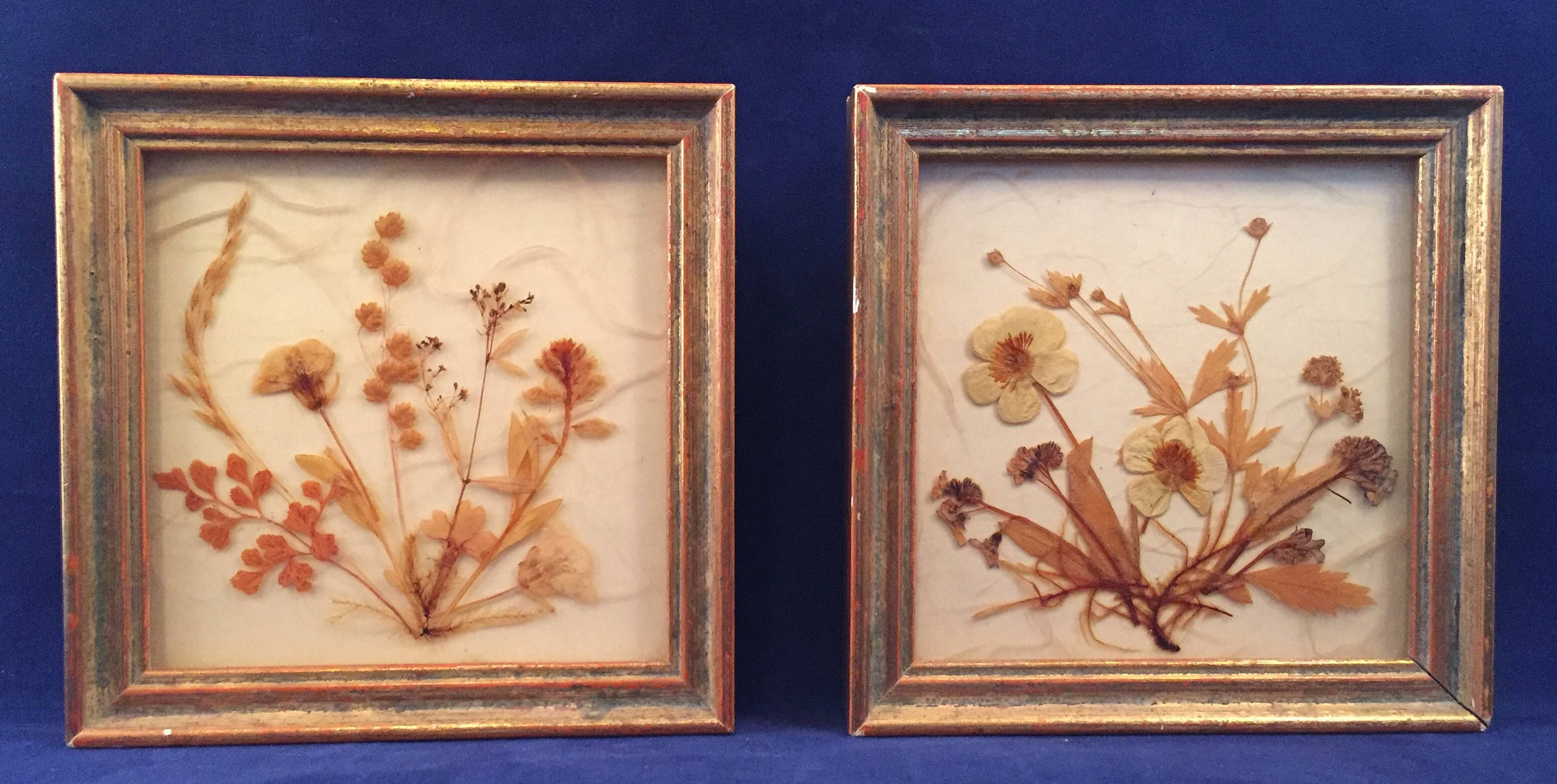 Vintage Pair of Small Brown and Cream Dried Flowers in Frames ...