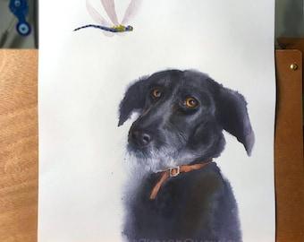 Custom Hand painted watercolour (wet on wet) pet portrait.  Watercolor Painting, Pet Portrait, Original Painting, Gift Art. Pet memorial.