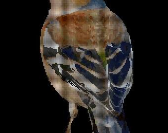 Fringilla coelebs Cross Stitch Chart