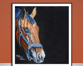 Horse fine art print, coloured pencil horse drawing, fine art Giclee print, horse portrait painting,original wildlife art