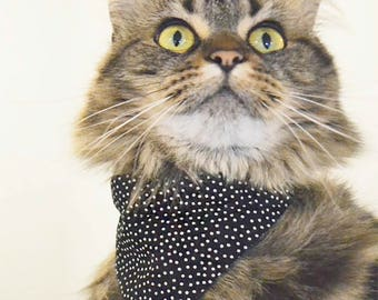 CUTIE bandana - over the collar- cat accessories - cats & kittens - Handmade in Quebec