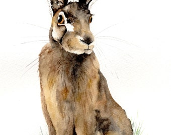 Brown Hare - original watercolour painting