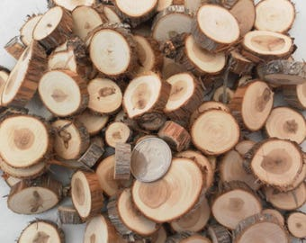 100 Small Wood Slices~ .5 to 1.25 inch~ Tree Slice Assortment ~ Summer Wedding