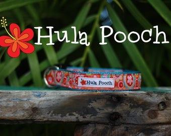 """Dog Collar """"Confetti"""" Pink Orange Turquoise - Small Dog Collar, Medium Dog Collar, FREE SHIPPING, Adjustable"""