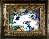 Framed Print - Mother Rabbit and Babies
