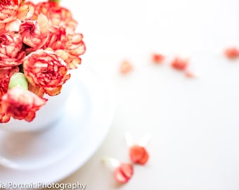 Orange and Peach Styled Photography, Coral and Red Flowers, Website Images