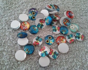 Lot 10 cabochons owls