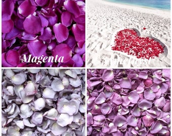 Shades of Purple Real Rose Petals - Eco Friendly Freeze Dried Rose Petals