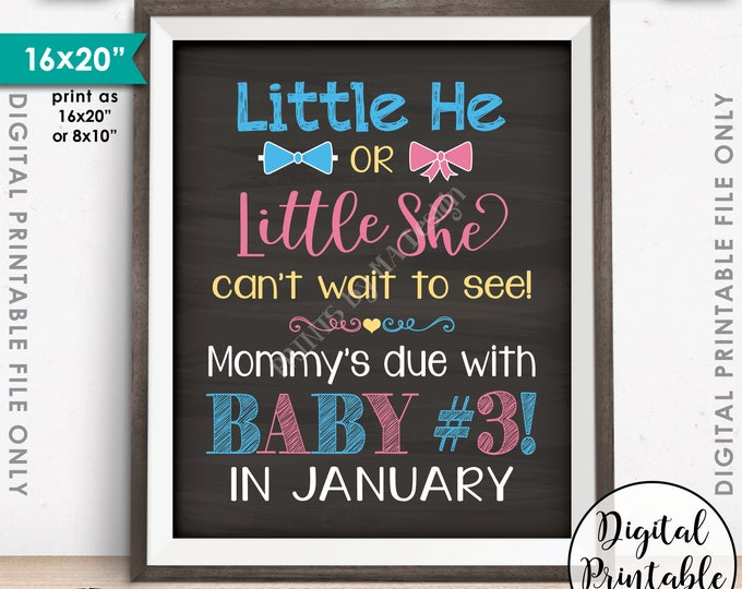 Baby #3 Pregnancy Announcement Little He or Little She Can't Wait to See Baby 3 in JANUARY Dated Chalkboard Style PRINTABLE Reveal Sign <ID>