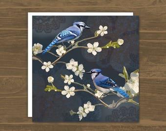 Blue Jays - greetings card - bird lovers - blue bird - nature - wildlife - bird watching - bird watchers - garden birds - faye maguire