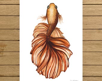 Bronze Betta Fish, Tropical Fish, Watercolor Illustration, Giclée Print, A3 or A4 size