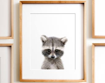 Raccoon print, Woodland animals, PRINTABLE art, Nursery decor, Animal art, Baby animals, Nursery wall art, Kids art,Baby raccoon,Nursery art