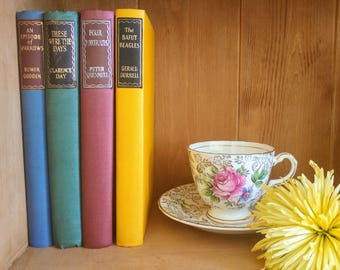Stunning Mismatched Harlequin Vintage Old Book Collection for Living Room Home Decor Display Red Yellow Green Blue Multi Colour Prop Shop