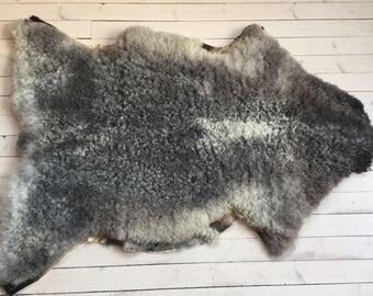 Supersoft sheepskin rug beautiful Norwegian pelt short haired sheep skin curly grey throw 18001