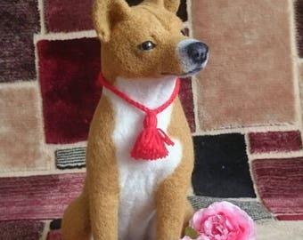 Basenji (Shih Tzu dogs are small)