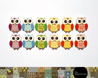 Owl Fridge Magnet Set
