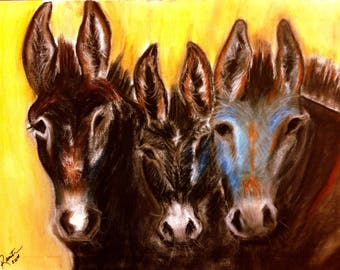 Donkeys of the BLM