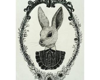 Victorian rabbit illustration