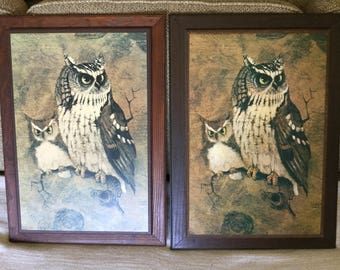 """Richard Hinger 70s Owl Picture, """"Screech"""" on Wood Backing /Frame, Owls"""