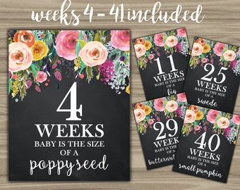 Weekly Pregnancy Signs - INSTANT DOWNLOAD - Pregnancy Weeks Photo Prop Baby Is Size Of A - Chalkboard Floral Pregnant Sign Weeks 4-41 - L31