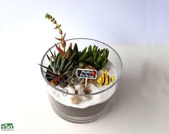 Succulent Terrarium - Personalised Gift
