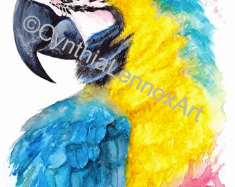 Blue and gold macaw, parrot, watercolour parrot, watercolour, wall art, fine art, print
