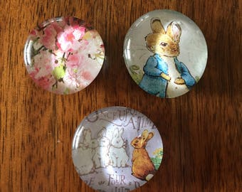 Peter Rabbit set of three glass marble magnets