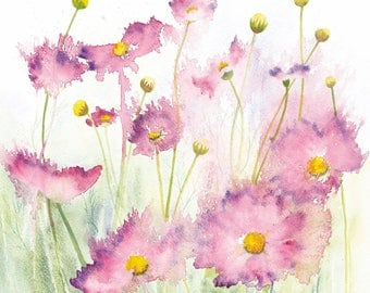 Cosmos Watercolour Print