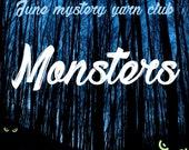 Yarn club - yarn subscription box - hand dyed mystery yarn - hand dyed sock yarn - indie dyed yarn - geeky yarn - monster themed yarn