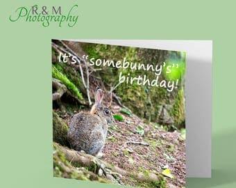 rabbit - bunny - birthday card - funny saying - animal card - rabbit card - bunny card - blank photo card