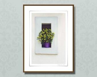 Modern fine art photography, Sanvitalia flower giclee print, 24x32 cm botanical art print, yellow wall art, home decor ideas
