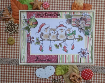 Merry Christmas card small owls on branch family