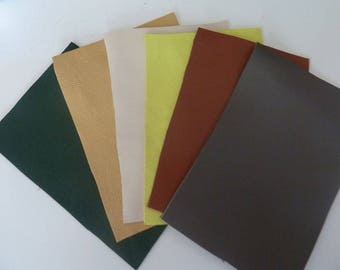set of 6 pieces of leather leather