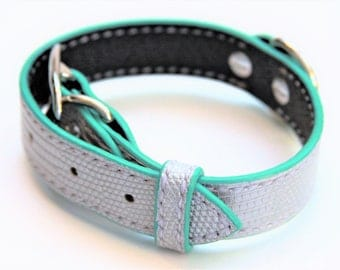 Dog Collar Genuine Lizard Silver/Turquoise