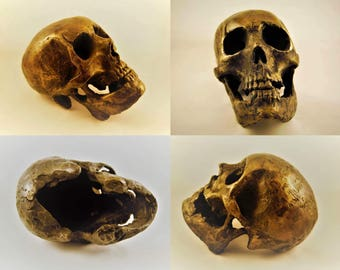 Cast Life Size Silicon Bronze Skull