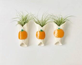 Handmade Hanging Ceramic Pumpkin Air Plant Holder