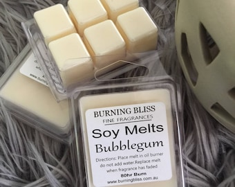 BURNING BLISS Soy Melts Highly Scented
