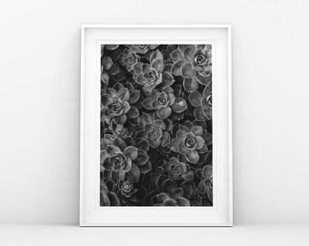 Flower Print - Botanical - Plant Poster - Botanical Print - Flower Poster - Black White - Nordic Print - Printable Wall Art - Scandinavian