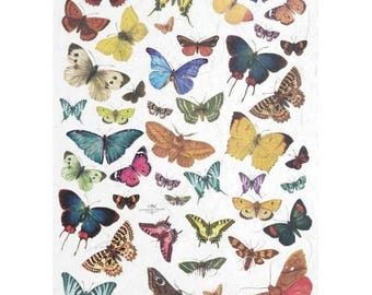 1 sheet of 21 x 28 cm Butterfly 230 collage decoupage rice paper