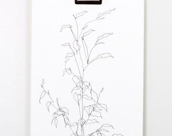Blind Contour Botanical Line Drawing 1
