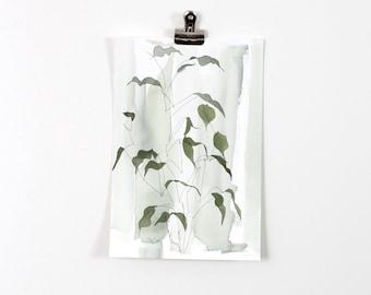 Green Blind Contour Botanical Wash