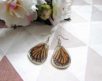 Orange and black wings,Butterfly earrings, Resin butterfly, Resin Earrings, , butterfly wings, Taxidermy, Taxidermy jewellry ,Black and red
